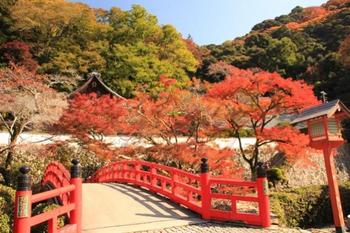 img_3024瀧安寺瑞雲橋からの眺めは.jpg